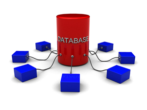 Unravelling The Life-Cycle Of Database Development